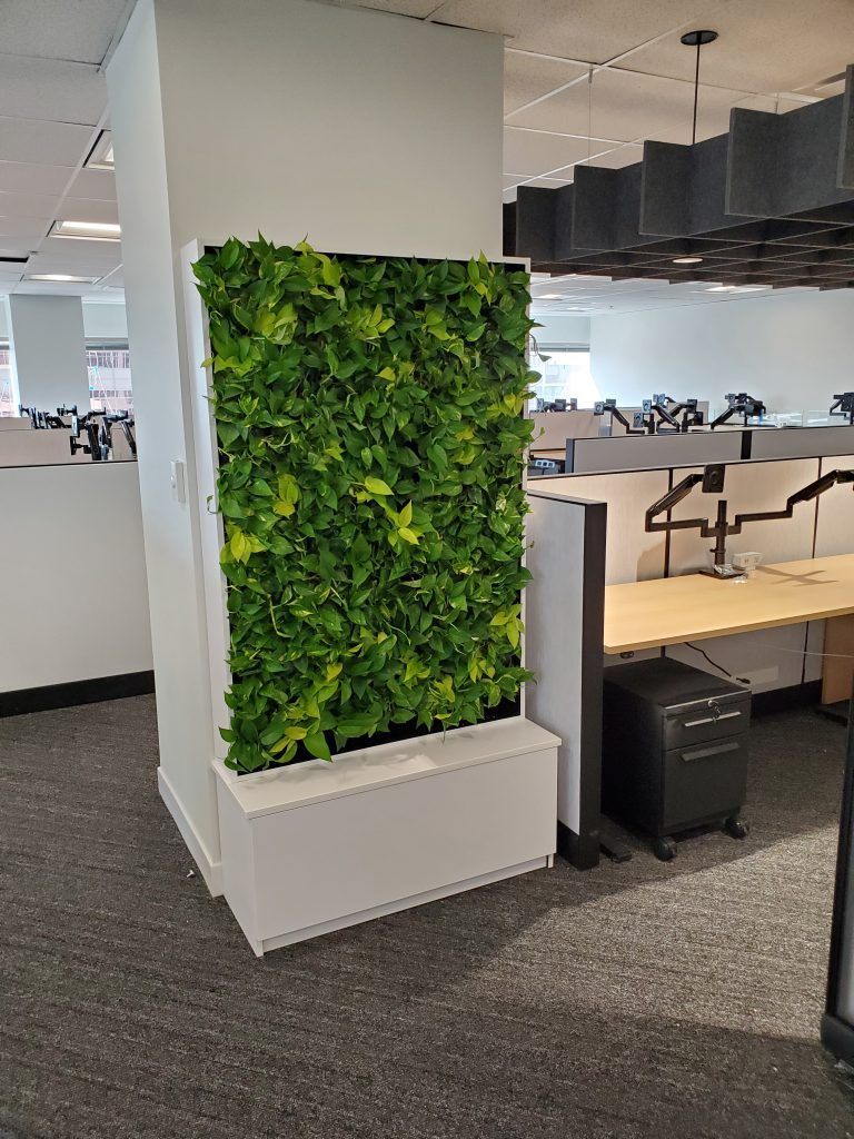 Living wall Cabinet